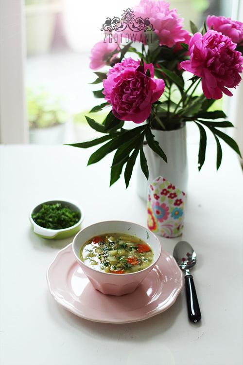 prosta,-wiosenna-zupa-jarzynowa-1
