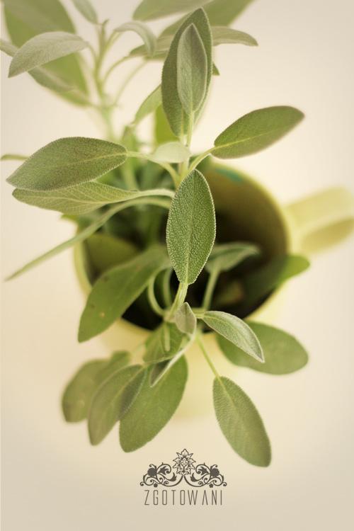 buleczki-drozdzowe-z-pieczarkami-i-mozzarella-10