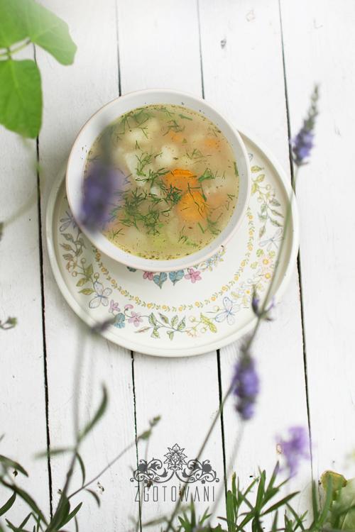 zupa-z-mlodych-warzyw-5