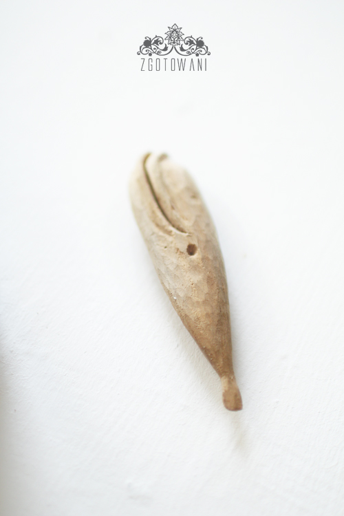 muszle-nadziewane-tunczykiem-i-pieczarkami-6